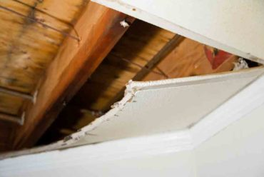 Roof Leak Repair in Tallahassee | 5 Dangers Associated with a Roof Leak