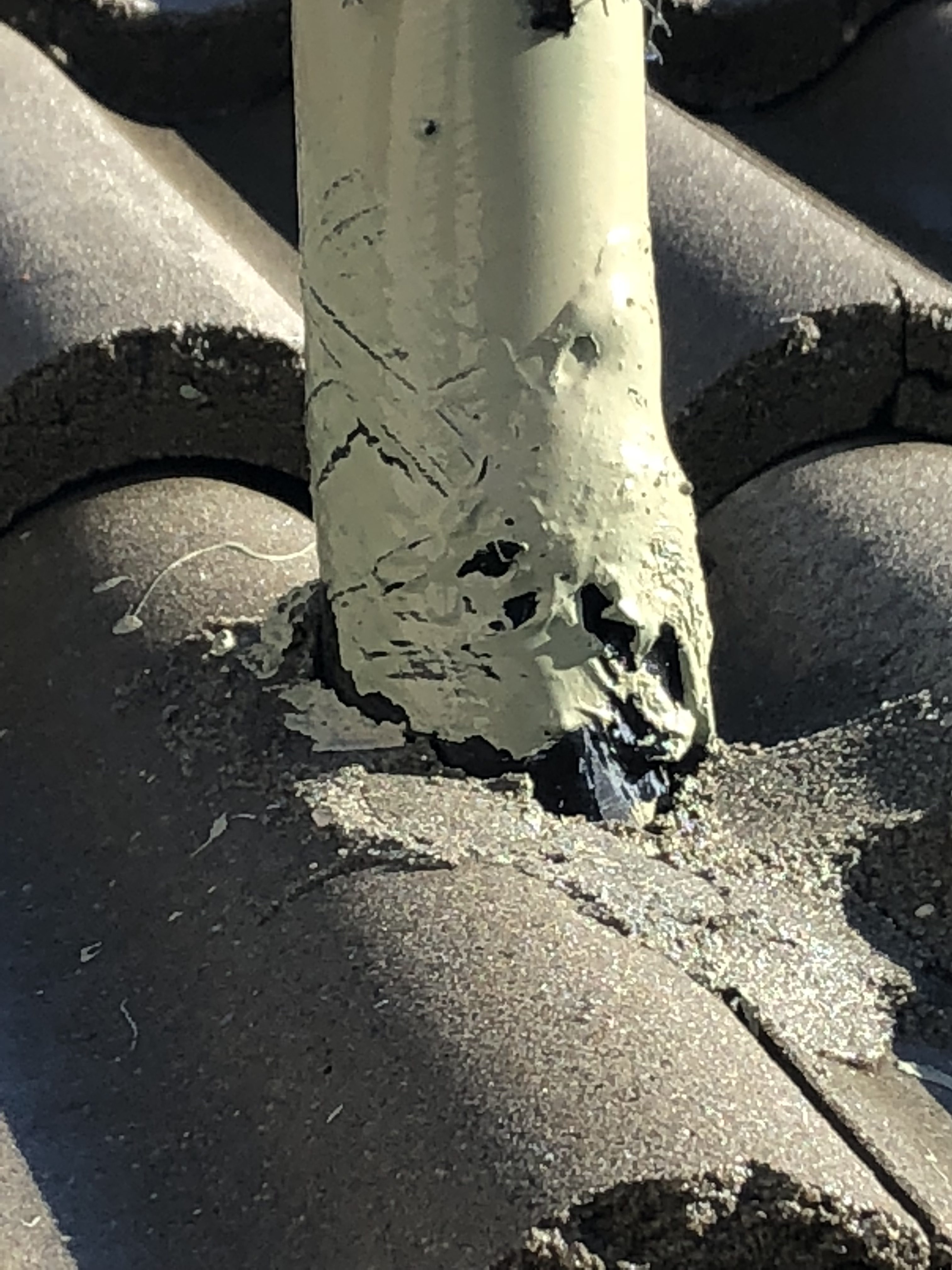Roof Leak in Tampa | What Does a Roof Inspector Look For?